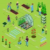 Greenhouse Isometric Flowchart Composition With Glasshouse Herbs Weeding Flowers Seedlings Soil Fert poster