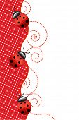 Vector red background with ladybugs.