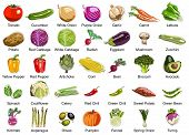 stock photo of kohlrabi  - This ollection includes 35 icons of colorful Vegetables - JPG