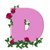 stock photo of climbing roses  - The letter D in the alphabet set Blushing Roses is soft pink - JPG