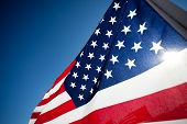 stock photo of veterans  - Large group of American Flags commemorating a national holiday - JPG