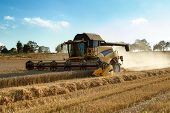 stock photo of combine  - Yellow harvester combine on field harvesting wheat in sunny weather - JPG