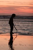 stock photo of clam digging  - A young boy walks the beach in search of razor clams to dig with the surf washes up the beach.