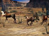 stock photo of appaloosa  - Four horse  - JPG