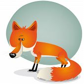 Cute Fox Character