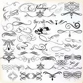 pic of swirly  - Vector set of calligraphic elements for design - JPG