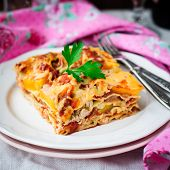 stock photo of lasagna  - A Piece of Chicken and Pumpkin Lasagna shallow dof copy space for your text square - JPG