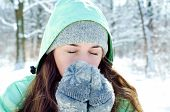 stock photo of winter trees  - a young woman in a winter outdoors - JPG
