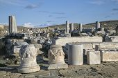 The ancient Terrace of the Lions on the  Greek island of Delos.