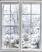 stock photo of insulator  - Home vinyl insulated windows with winter view of snowy trees and plants - JPG