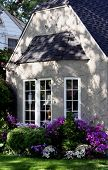 picture of dapple-grey  - cottage window with landscaping in dappled sunlight - JPG