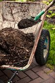 stock photo of rich soil  - Closeup photo of spade putting soil in old wheelbarrow - JPG