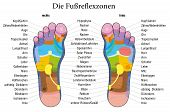 image of reflexology  - Foot reflexology chart with accurate description  - JPG