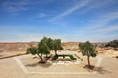 pic of minister  - Kibbutz Sde Boker in the Negev desert - JPG