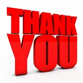 pic of give thanks  - 3D Thank you text on the white background - JPG