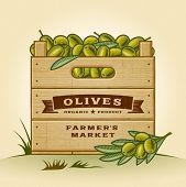 foto of crate  - Retro crate of olives - JPG