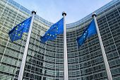 pic of european  - European Union flags in front of the Berlaymont building  - JPG