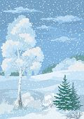 pic of snow clouds  - Christmas Winter Forest Landscape with Birch - JPG