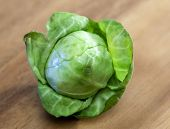picture of brussels sprouts  - Brussels sprout  - JPG