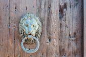 stock photo of lions-head  - Doors with door knocker in the shape of lion head - JPG