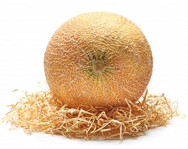 stock photo of food pyramid  - Melon organic fresh juicy yellow on straw on a white background closeup food - JPG