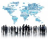 picture of nature conservation  - Natural Resources Environmental Conservation Sustainability Concept - JPG