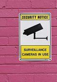 Постер, плакат: Знак безопасности камеры на стене ярко розовый