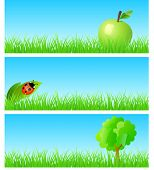 pic of triptych  - Vector triptych of objects on detailed grass - JPG