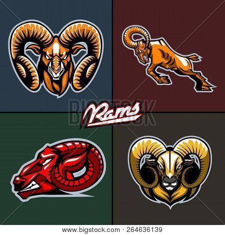 Different Ram Heads Cartoon Style