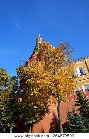 Bright Foliage On An Autumn
