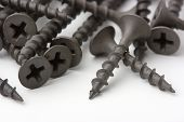 stock photo of countersink  - Wood screws on white surface - JPG