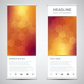 Abstract Roll Up Banners For Presentation And Publication With Hexagons Pattern. Medicine, Science A poster