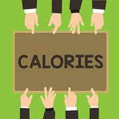 Conceptual Hand Writing Showing Calories. Business Photo Showcasing Energy Released By Food As It Is poster