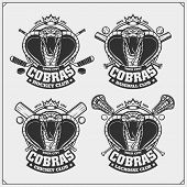 Cricket, Baseball, Lacrosse And Hockey Badges And Labels. Sport Club Emblems With King Cobra. poster