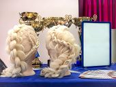Braids And Cups Team In A Beauty Salon. Professional Hair Care And Creating Hairstyles poster