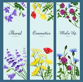 Wildflowers Banners. Floral Frame With Place For Text Different Herb Flowers Aromatherapy Products N poster