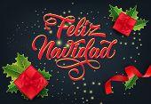 Feliz Navidad Festive Card Design. Christmas Gifts, Ribbons And Mistletoe Leaves On Sparkling Black  poster