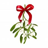 Mistletoe. Vector Illustration Of Hanging Mistletoe Sprigs With With Berries And Red Bow Isolated On poster