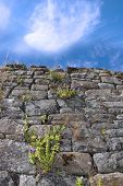 Old Irish Wall