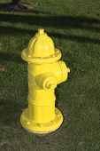 foto of firehouse  - A bright yellow fire hydrant on a grass lawn - JPG