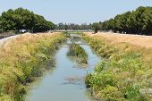 stock photo of tomas  - San Tomas Aquino Creek in summer Santa Clara California - JPG
