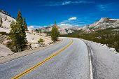 foto of horsetail  - Tioga Pass Road in Yosemite National Park - JPG