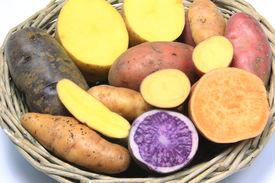 stock photo of solanum tuberosum  - Many different varieties of potatoes some halved  - JPG