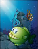 stock photo of piranha  - Illustration of a big piranha under the sea near the rocks on a white background - JPG