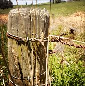 picture of yesteryear  - Closeup of post and wires in rural scene - JPG