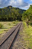 foto of gage  - The ancient narrow gage railwayin tropical park Mauritius - JPG