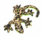 Salamander Toy Isolated On White Background
