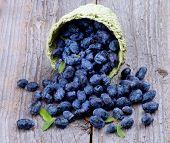 picture of honeysuckle  - Fresh Ripe Honeysuckle Berries Scattered from Green Wicker Basket on Rustic Wooden background - JPG