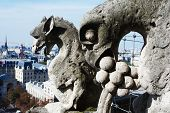picture of gargoyles  - Gargoyle looking at Paris. Picture shot at the top of Notre dame cathedral. ** Note: Shallow depth of field - JPG