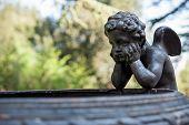 picture of cherub  - A cherubs in Villa Chigi Castelnuovo Berardenga Tuscany - JPG